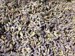 Lavender Flower Buds Dried