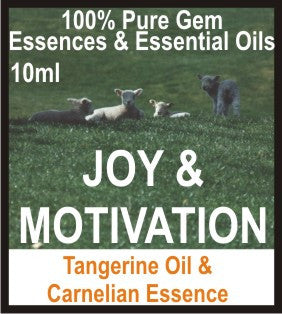 Joy Essence Oil (Tangerine, Carnelian)