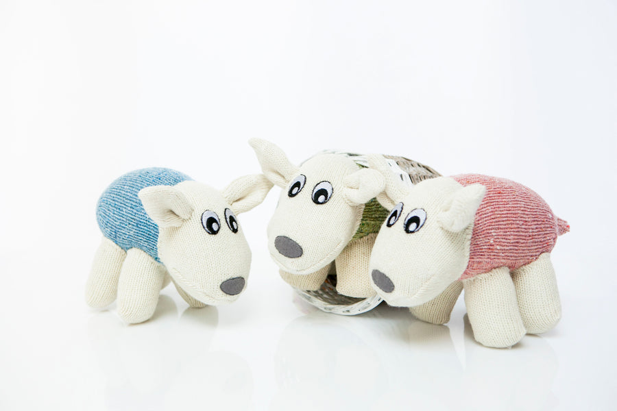 Interview with Design Ireland - Sock-Tastic Animal Fun with Red Rufus