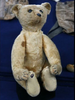 Stieff Teddy Bear 1903