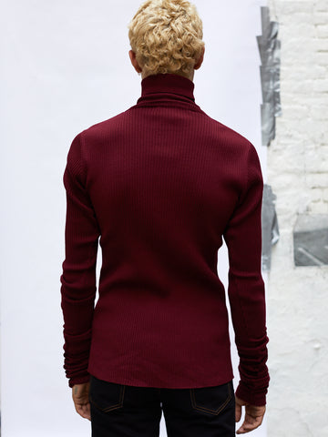 Extended Sleeve Turtleneck Sweater
