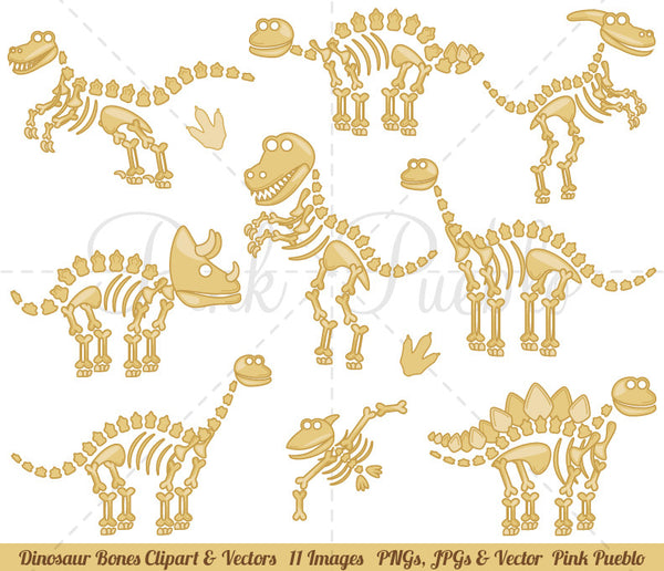 Dinosaur Fossils and Bones Clipart and Vectors - PinkPueblo