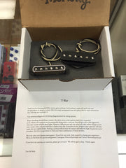 McNelly T-Bar Tele Pickup Set