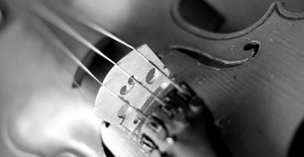 High-quality musical violin rentals in Colorado Springs