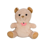 Hidden Camera Teddy Bear - battery operated