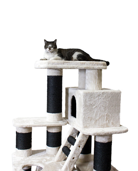 Extra Large Chicago cat tree by Kitty Mansions