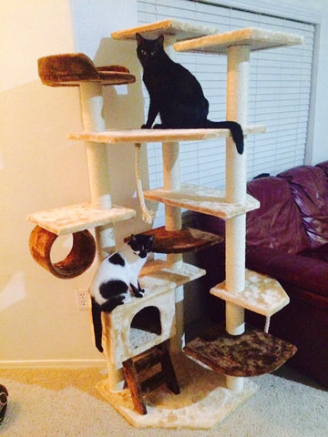 Troy cat tower by Kitty Mansions