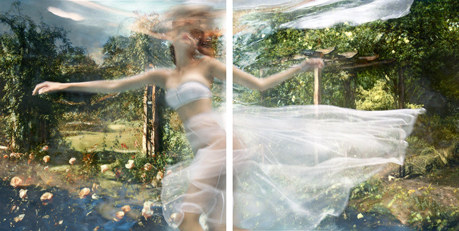 Barbara Cole - Battersea Garden Diptych, from Falling Through Time, Chromogenic Print Face-Mounted to Plexiglass, Back-Mounted to Hidden Aluminum Channel,  - Bau-Xi Gallery