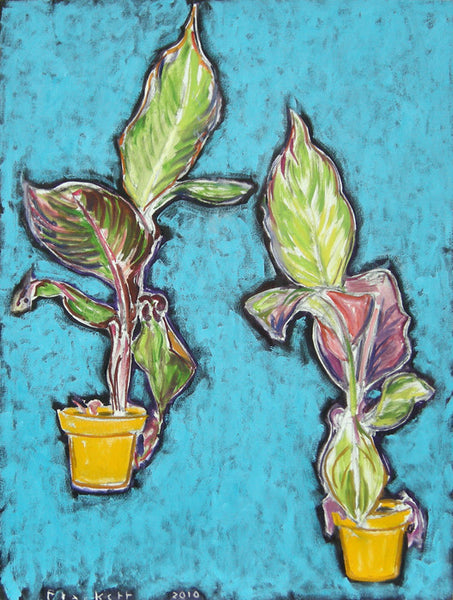 Joseph Plaskett - Plant in Yellow Pot - Double, Oil on Canvas, Framed in Brushed Silver,  - Bau-Xi Gallery
