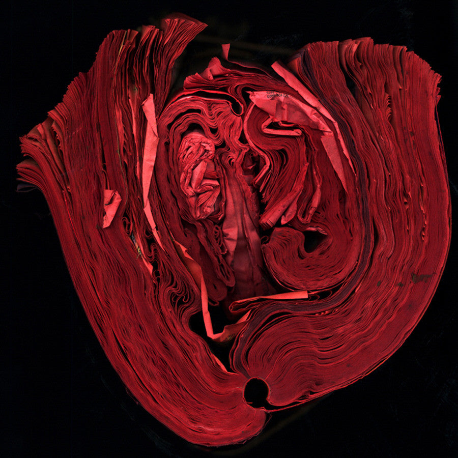 Cara Barer - Heart - 24 X 24 in., Archival Pigment Print Mounted on Archival Substrate, Framed in Black with Plexiglass,  - Bau-Xi Gallery