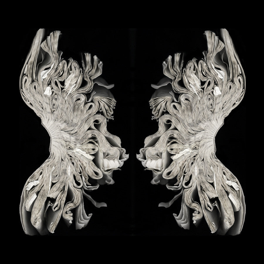 Cara Barer - Corset (Rorschach) - available in 3 sizes, Archival Pigment Print Mounted on Archival Substrate, Framed in Black with Plexiglass,  - Bau-Xi Gallery