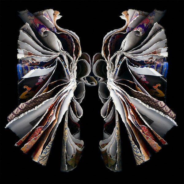 Cara Barer - Moth - available in 3 sizes, Archival Pigment Print Mounted on Archival Substrate, Framed in Black with Plexiglass,  - Bau-Xi Gallery
