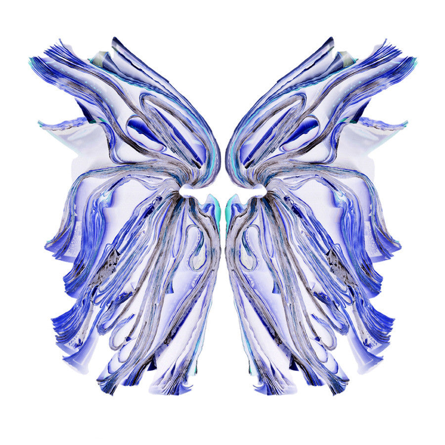 Cara Barer - Blue Butterfly - 40x40 in., Archival Pigment Print Mounted on Archival Substrate, Framed in White with Plexiglass,  - Bau-Xi Gallery