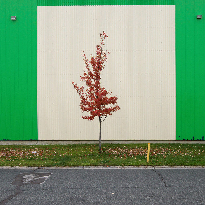 Chris Shepherd - Storage Mart, Research Road  - 36x36 in. - $3,100, Chromogenic Print Mounted to Archival Substrate, Framed in White with Glass,  - Bau-Xi Gallery