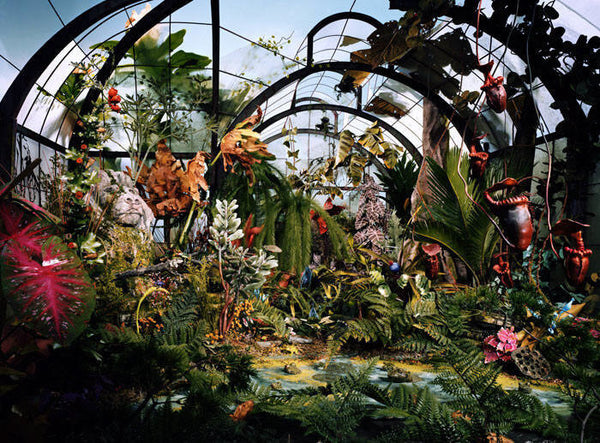 Lori Nix - Botanic Garden - available in 2 sizes, Chromogenic Print Mounted to Archival Substrate, Framed in White with Plexiglass,  - Bau-Xi Gallery