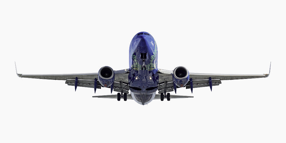"Jeffrey Milstein - Southwest Airlines Boeing 737-700 ""Nevada One"" -Available in 3 sizes, Archival Inkjet Print Mounted on Archival Substrate, Framed in White with Plexiglass,  - Bau-Xi Gallery"