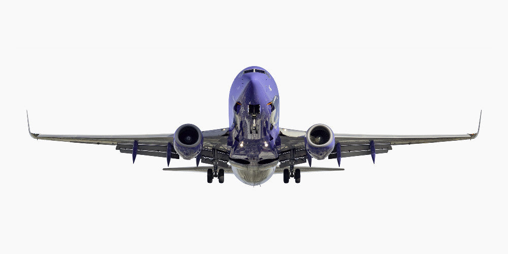 "Jeffrey Milstein - Southwest Airlines Boeing 737-700 ""Penguin One"", Archival Inkjet Print Mounted on Archival Substrate, Framed in White with Plexiglass,  - Bau-Xi Gallery"