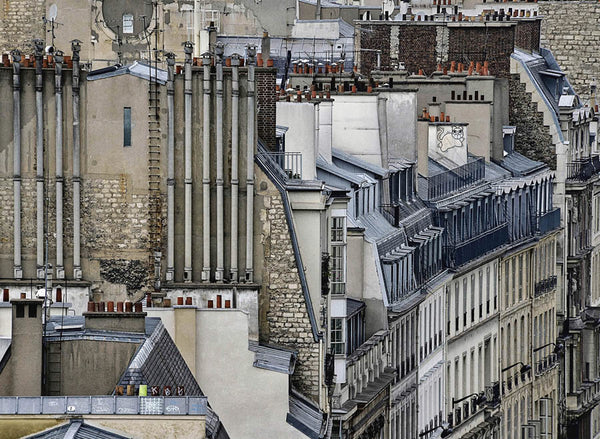 Michael Wolf - Paris Rooftops 8, Chromogenic Print Mounted to Archival Substrate, Framed in White with Non-Reflective Plexiglass,  - Bau-Xi Gallery