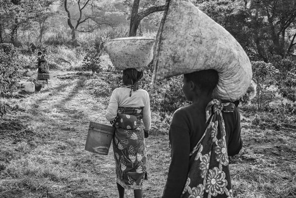 Jakob de Boer - Coffee Pickers Returning, Tanzania, Selenium toned, silver gelatin print, unframed,  - Bau-Xi Gallery