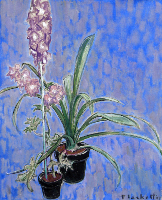 Joseph Plaskett - Pink Delphineum and Clivia, Oil on Canvas, Floating in Brushed Silver Frame,  - Bau-Xi Gallery
