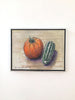 Joseph Plaskett - Pumpkin & Marrow (2), Oil on Canvas, Unframed,  - Bau-Xi Gallery