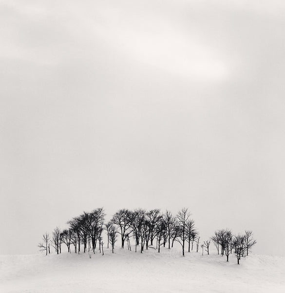 Michael Kenna - Afternoon Light, Shibecha, Hokkaido, Sepia toned silver gelatin print, framed in grey with museum glass,  - Bau-Xi Gallery