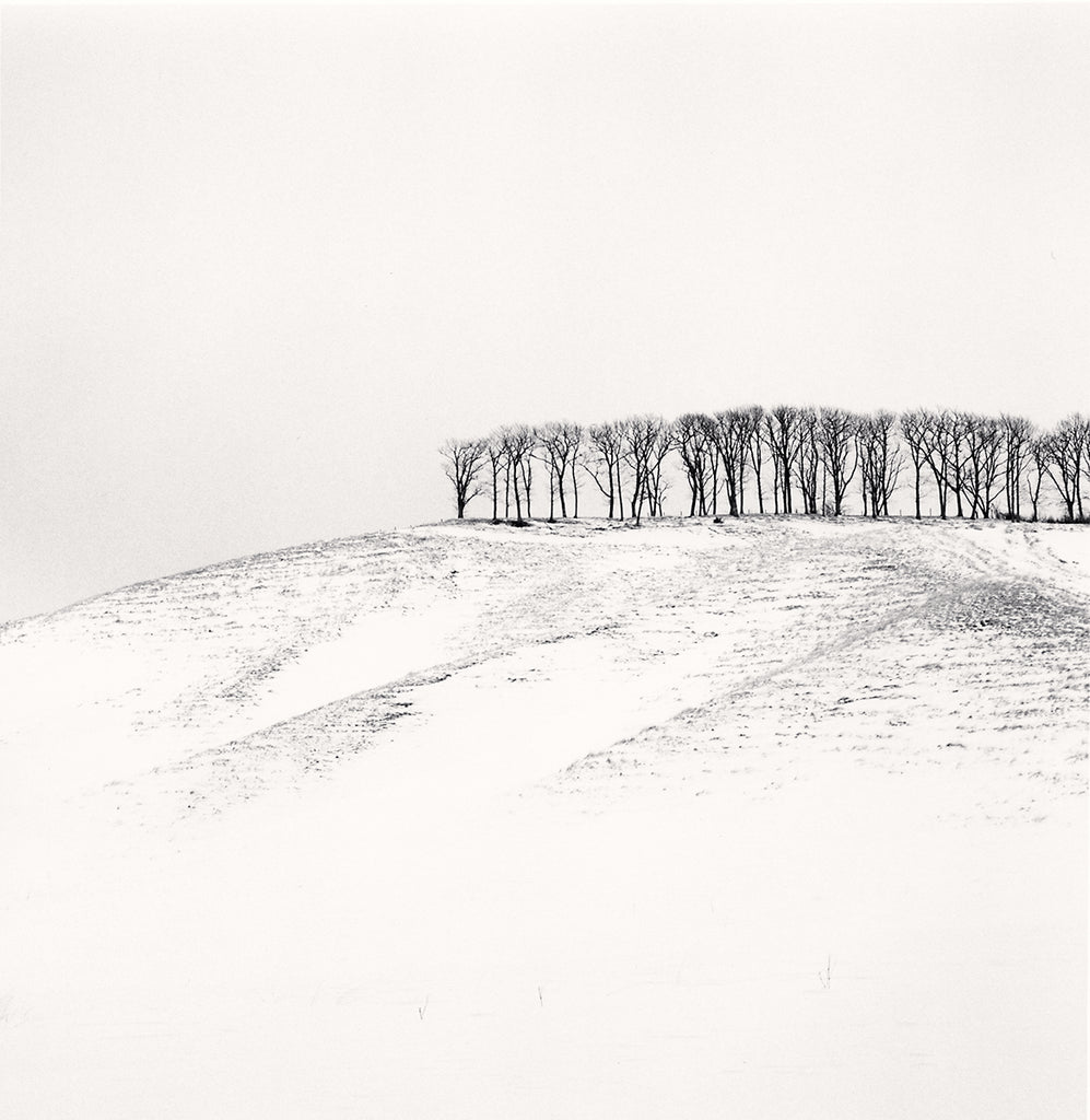 Michael Kenna Artwork | Calm, minimalist black and white photographs of trees, water, architecture, and landscapes.
