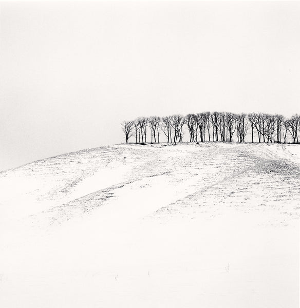 Michael Kenna - Hilltop Trees, Study 4, Teshikaga, Hokkaido, Sepia toned silver gelatin print, framed in grey with museum glass,  - Bau-Xi Gallery