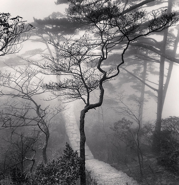 Michael Kenna - Huangshan Mountains, Study 20, Anhui, Sepia toned silver gelatin print, framed in grey with museum glass,  - Bau-Xi Gallery