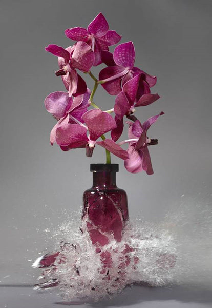 Martin Klimas Artwork | Colourful and energetic photographs of shattering still lifes of flower vases and porcelain.
