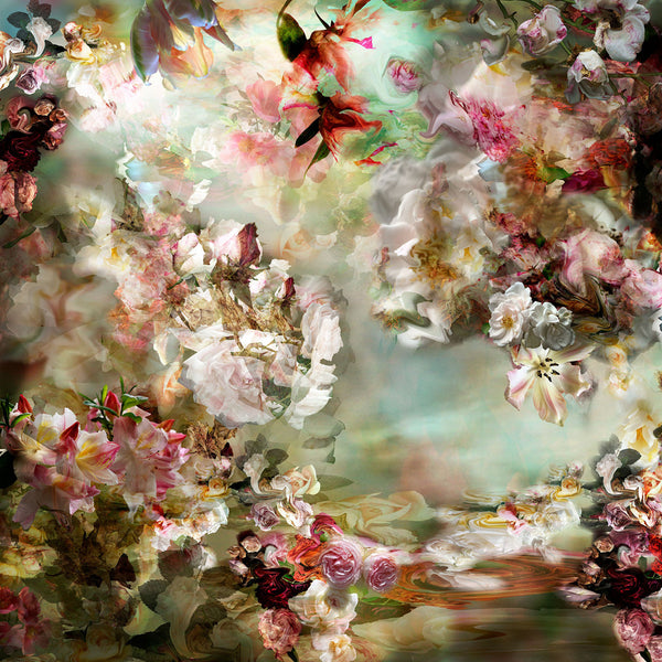 Isabelle Menin Artwork | Colourful, dramatic, painterly, abstract composite photographs of flowers and fruit.