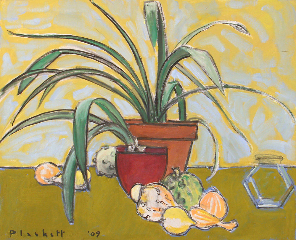 Joseph Plaskett - Clivia 2, Gourds, Oil on Canvas,  - Bau-Xi Gallery