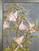 Joseph Plaskett - Pink Datura, Oil on Canvas, Floating in Brushed Silver Frame,  - Bau-Xi Gallery