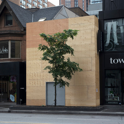 Yorkville Hoarding and Tree - 3 sizes, $1,350-$4,300