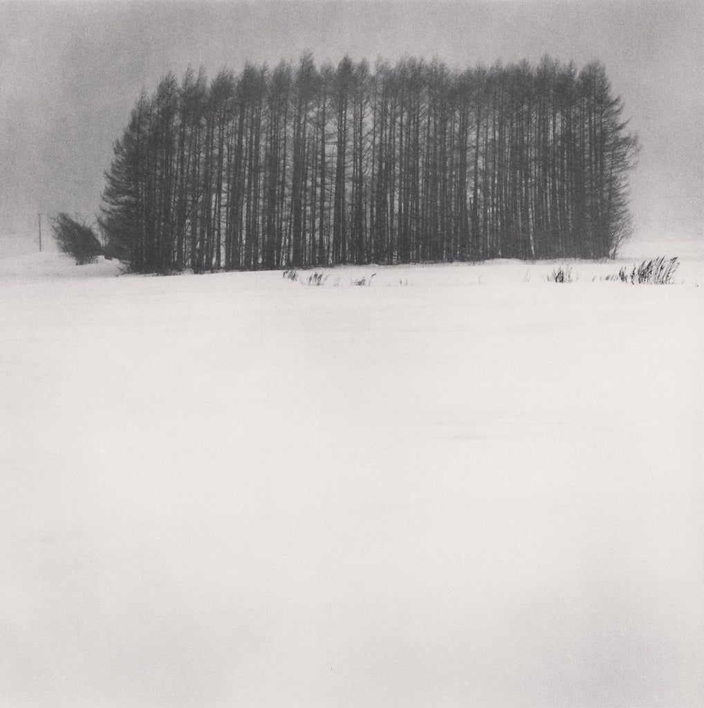 Michael Kenna - Trees in Snowstorm, Wakoto, Hokkaido, Japan, Sepia toned silver gelatin print, framed in grey with museum glass,  - Bau-Xi Gallery