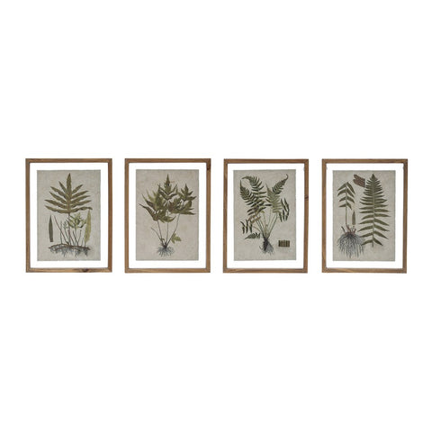 Creative Co-op CCOP DF2854A Botanical Print Wood Framed Wall Decor