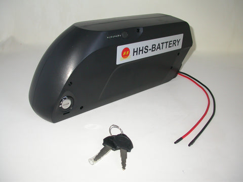 NI2019│48V 15 AH Battery - Dolphin Type