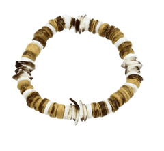Tiger Coconut With White Clam Shell Bracelet