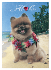 "Greeting Card ""Chewy Aloha"""