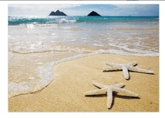 "Greeting Card ""Lanikai Starfish"""