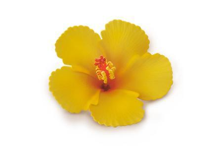 Yellow Foam Hibiscus Hair Clip, Large - Leilanis Attic