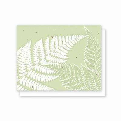 All Occasion Fern Plantable Greeting Card - 5 Pack - Fine Gifts La Bella Basket Company