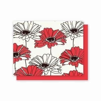All Occasion Gerber Daisy Plantable Greeting Cards - Fine Gifts La Bella Basket Company