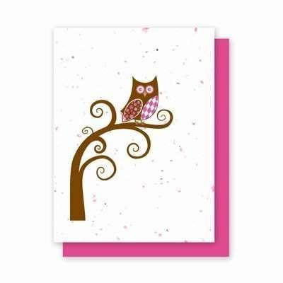 Argyle Owl - 4 Pack Plantable Greeting Cards - Fine Gifts La Bella Basket Company