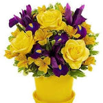 Bushel Full of Sunshine  Light up someone's day who is feeling under the weather with a delivery of the Bushel Full of Sunshine arrangement.