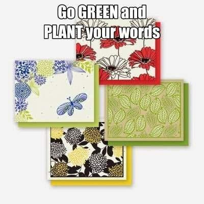 Floral chic all occasion plantable greeting cards variety 4 pack m4hsunfo