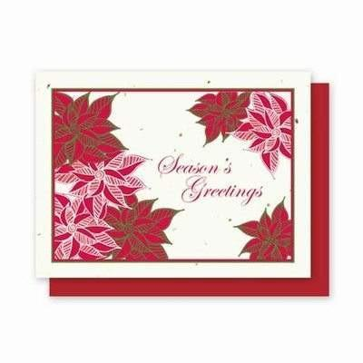 Holiday Poinsettias Plantable Greeting Cards - 5 Pack - Fine Gifts La Bella Basket Company