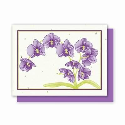 Orchid Landscape Plantable Greeting Cards- 4 Pack - Fine Gifts La Bella Basket Company