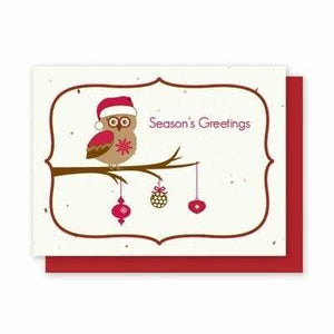Owl Card Plantable Greeting Cards - 25 Pack - Fine Gifts La Bella Basket Company