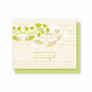 Thank You Ginkgo - 5 Pack - Fine Gifts La Bella Basket Company